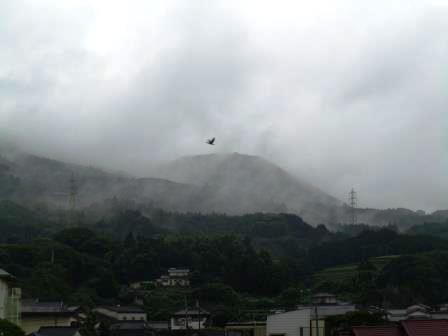 嬉野の朝の風景6(2013-06-30)