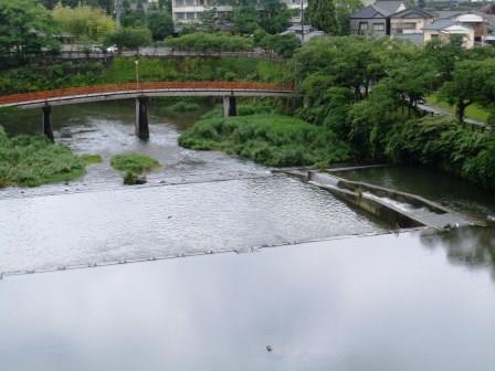 嬉野の朝の風景2(2013-06-30)