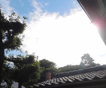 暑い一日(2013-08-03)