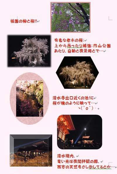 京都、桜夜景
