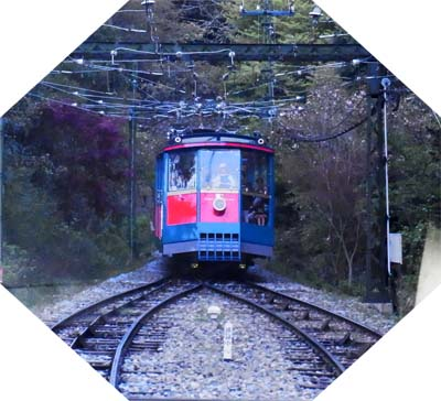 RIMG0062.jpg