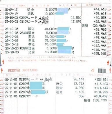 2013.10ミニピンレスキュー収支報告