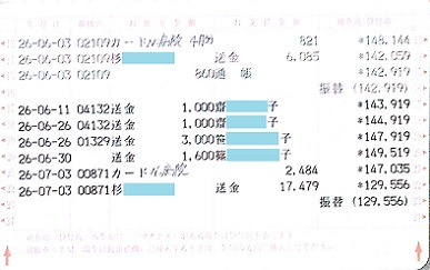 2014.6ミニピンレスキュー収支報告