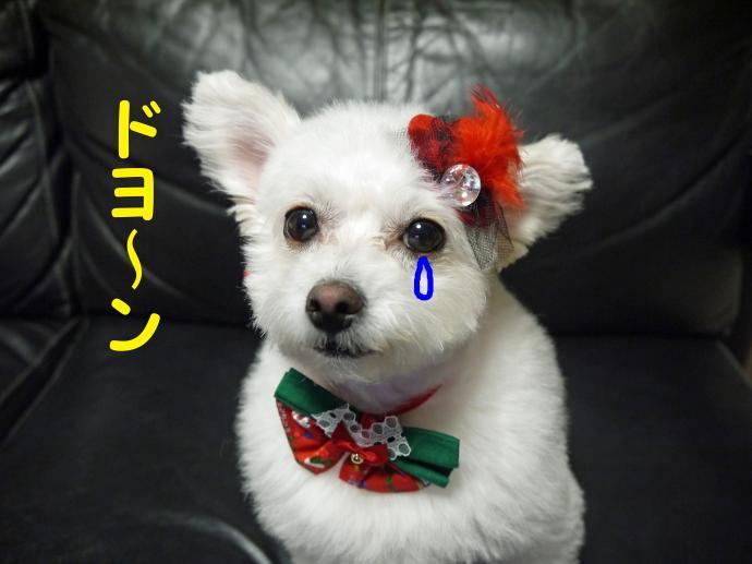 ドヨ~ン_convert_20130923004500