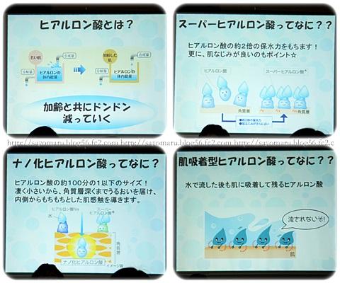 sayomaru5-900.jpg