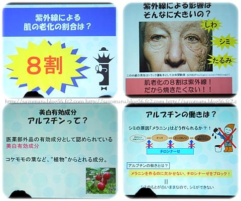sayomaru5-901.jpg
