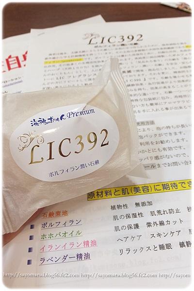 sayomaru6-472.jpg