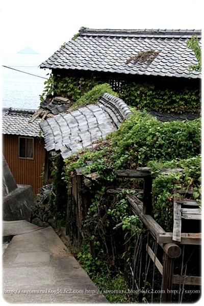 sayomaru6-767.jpg