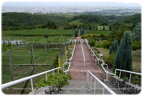 sayomaru6-900.jpg