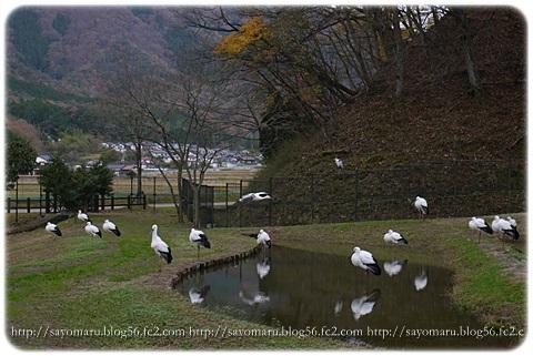 sayomaru8-114.jpg