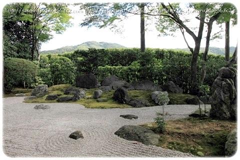 sayomaru8-181a.jpg