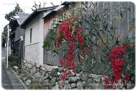 sayomaru8-183.jpg