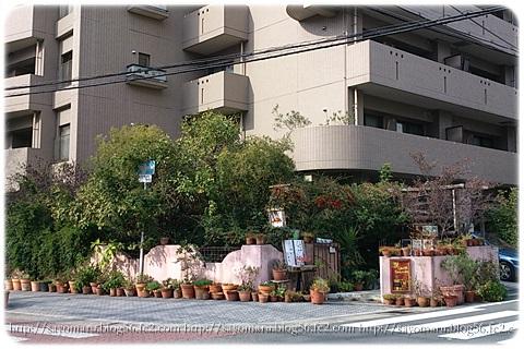 sayomaru8-323.jpg