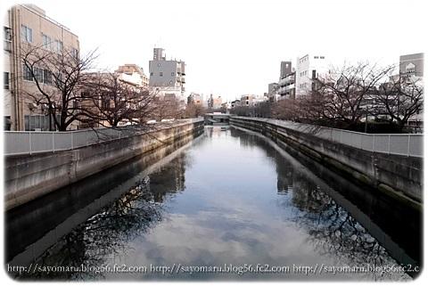 sayomaru8-347.jpg