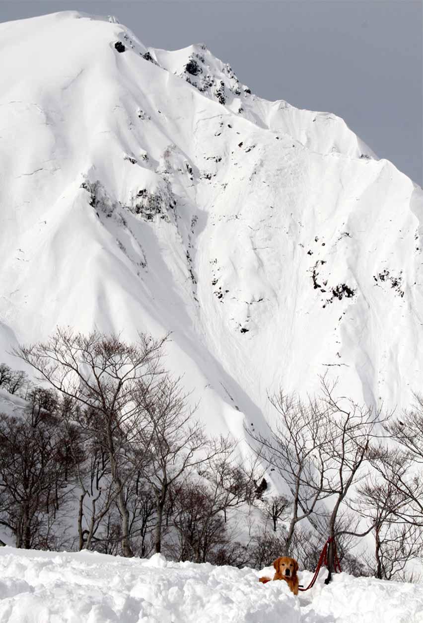 2014 関東雪崩(2)