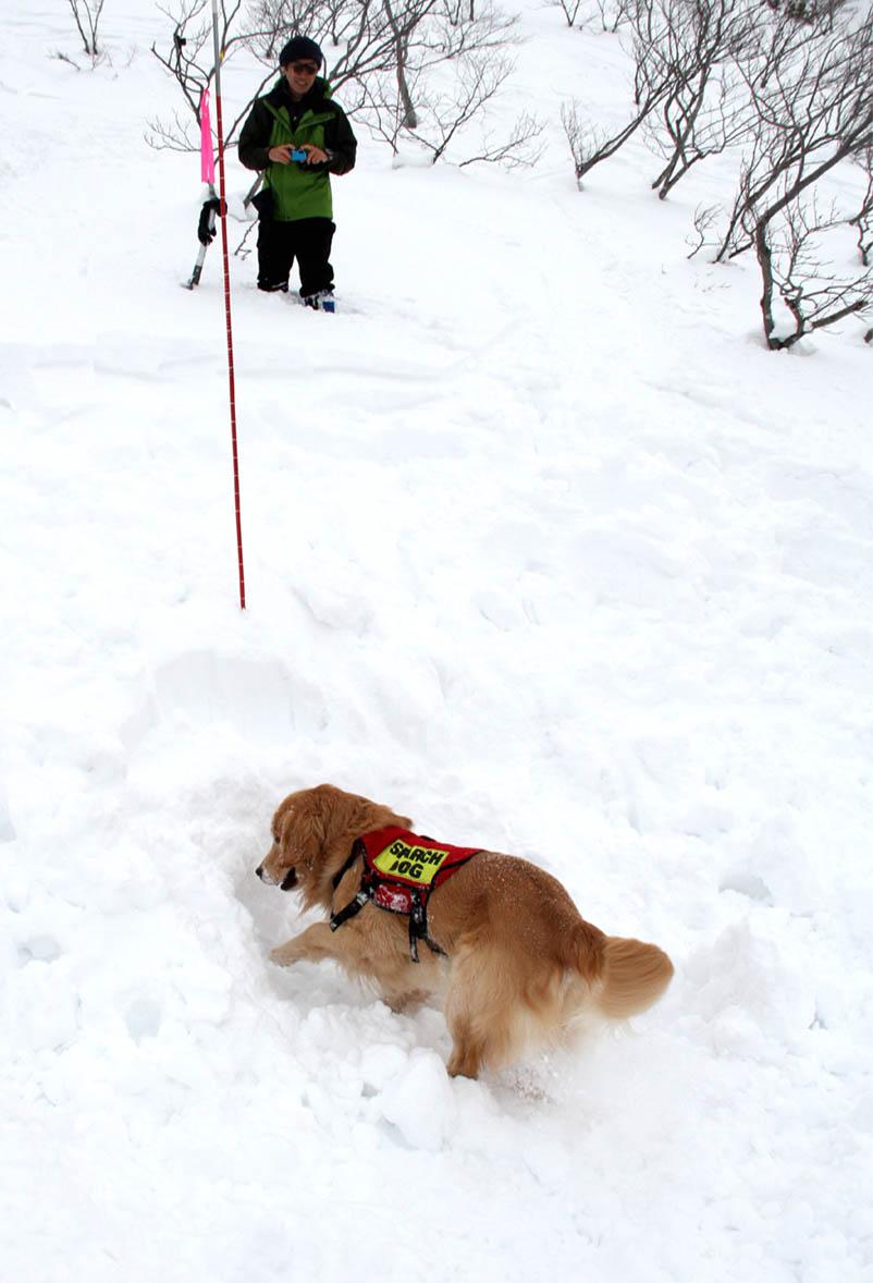 2014 関東雪崩(5)