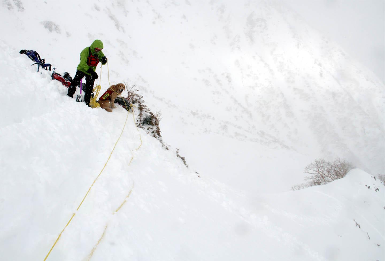 2014年 全国雪崩 (2)