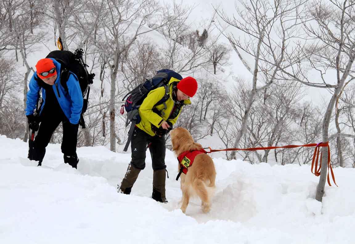 2014 関東雪崩(16)