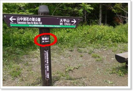 130609ishiwari15.jpg