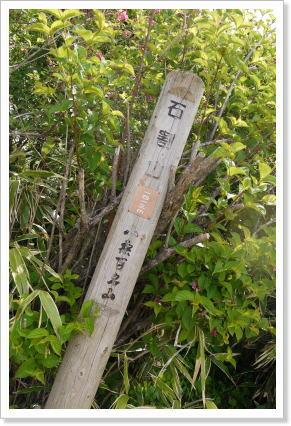130609ishiwari5.jpg