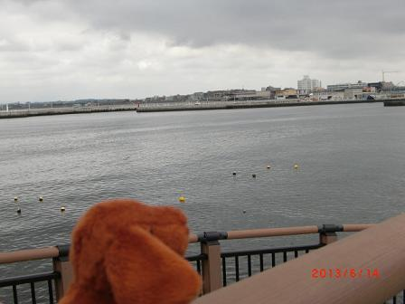 江の島の海だじょ