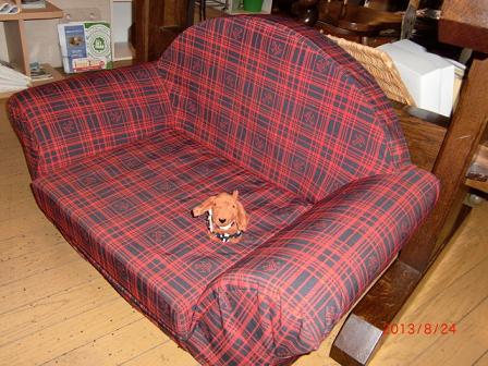 ソファでくつろぐダロちゃん