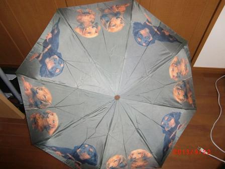ダックスの傘