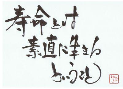 千田琢哉名言 294 (2)
