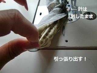 PICTs0034.jpg