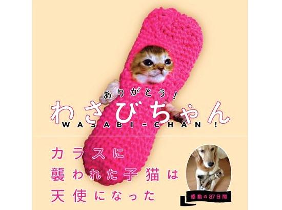 thankyou_wasabi.jpg