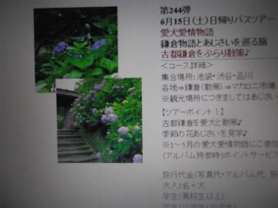 DSCF4625-1.jpg