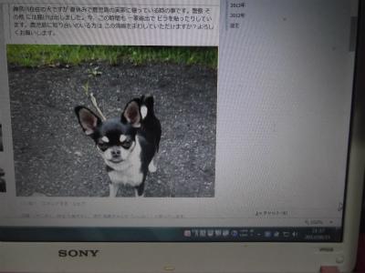 DSCF7046-2.jpg
