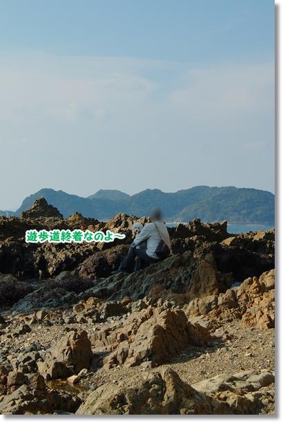 四億年前の地層7