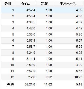 20131115_lap.jpg