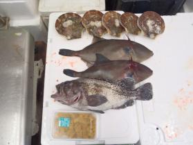 5鮮魚セット2013531