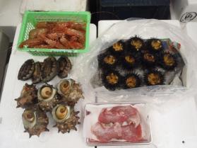 2鮮魚セット2013531