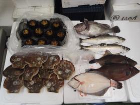 3鮮魚セット2013531