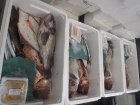 6鮮魚セット2013731