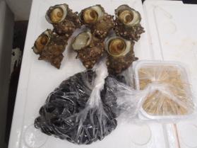 9鮮魚セット201392