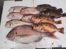 3鮮魚セット201393