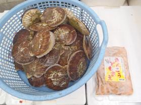 10鮮魚セット201393