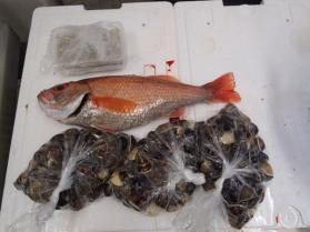 7鮮魚セット201393