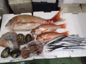 1鮮魚セット201397