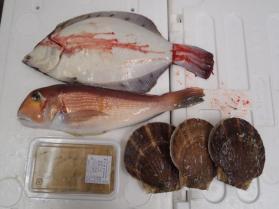 1鮮魚セット2013912