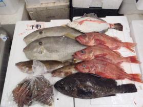 10鮮魚セット2013912