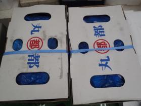 1冷凍鯖2013913