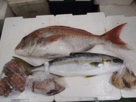 4鮮魚セット2013914