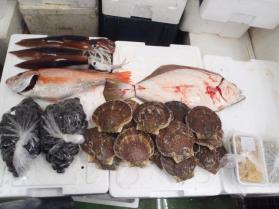 7鮮魚セット2013914