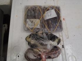 12鮮魚セット2013914