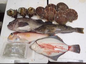 13鮮魚セット2013914